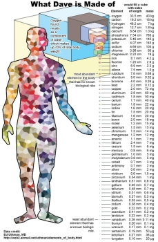 Chemical elements: What your body is made of