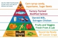 GMOs--Monsanto's food pyramid