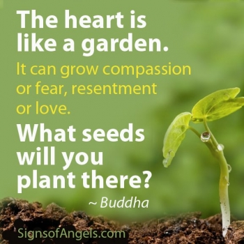 What grows in your heart?