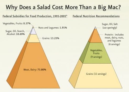 Why are meats so cheap? Federal subsidies